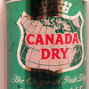 Canada Dry Ginger Ale NITNIT 0,33--a.JPG