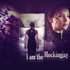 The-Hunger-Games-the-hunger-games-29316511-1024-768.png