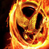 -The-Hunger-Games-Movie-Poster-Wallpapers-the-hunger-games-24129227-1600-900.jpg